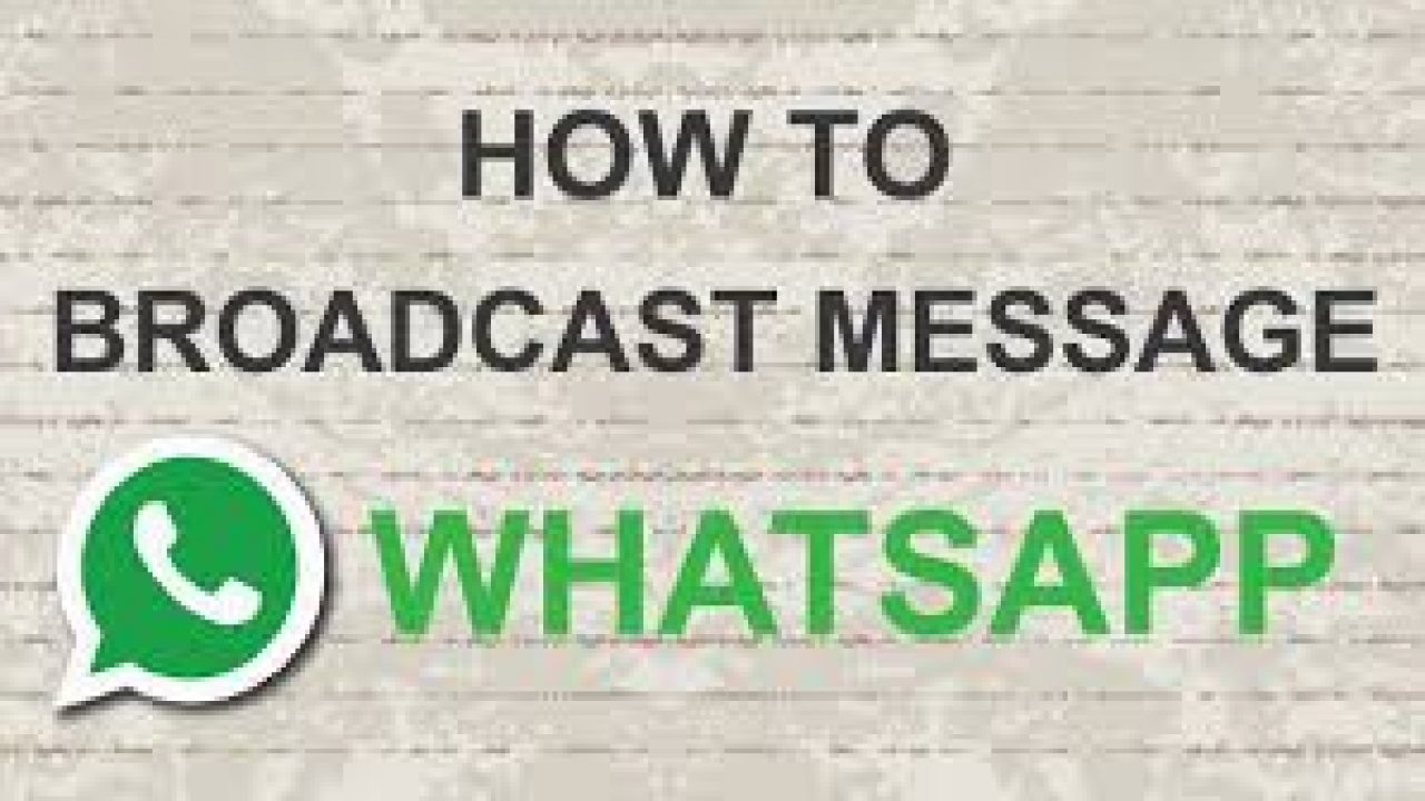 How To Know If Someone Read Your WhatsApp Broadcast Message