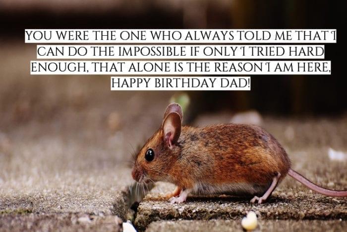Happy Birtdhay Dad Meme