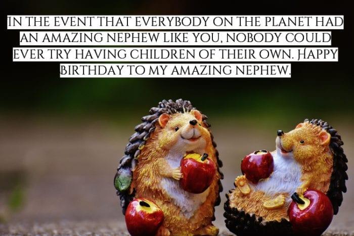 Happy Birthday Newphew meme