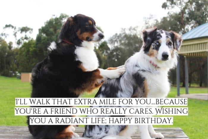 Happy Birthday friend meme 1
