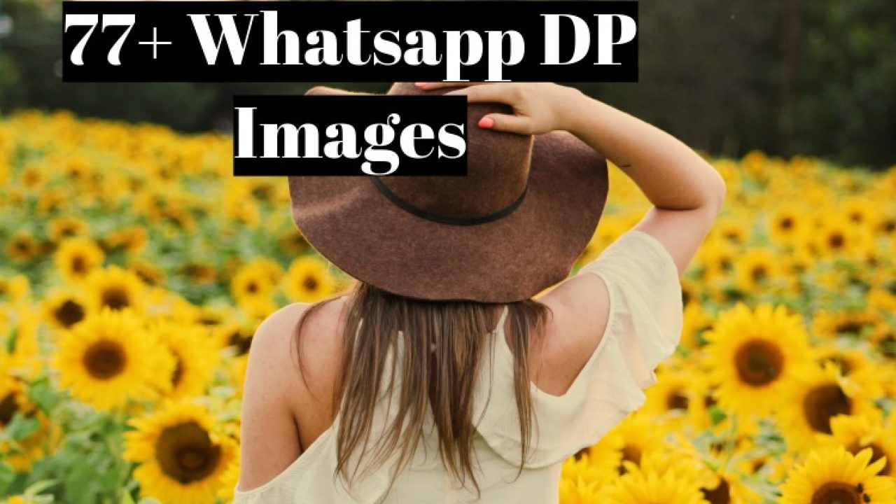77+ Best Whatsapp DP Images and Status - For Girls and Boys