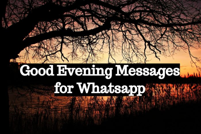 Good evening messages for whatsapp