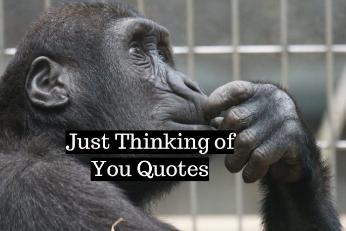 Just Thinking of You Quotes