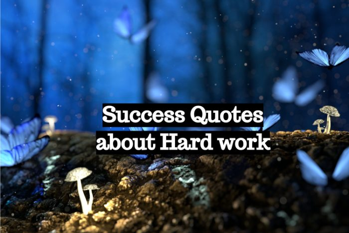 Success Quotes about Hard work